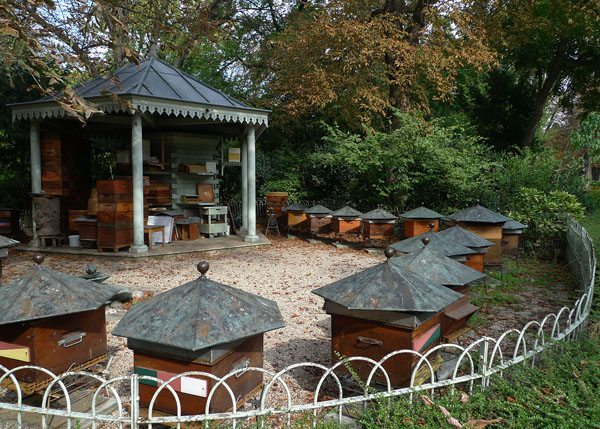 Beehives at Jardin du Luxembourg