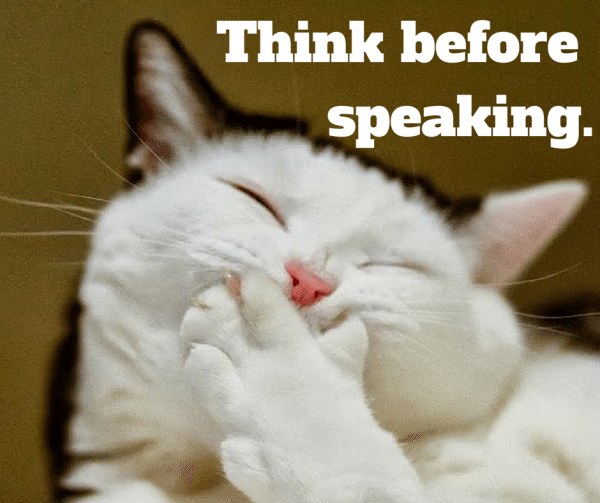 6_Think before speaking