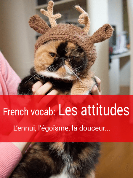 french-vocab-l'attitude