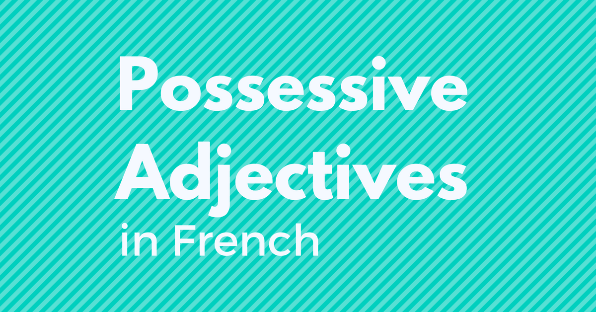 possessive adjectives in french