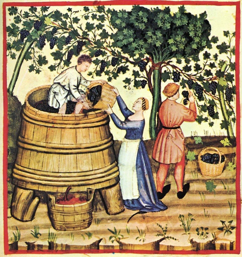 wine tradition