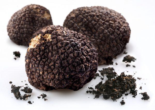 truffl