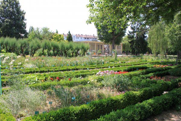 Jardin botanique de l'Arquebuse