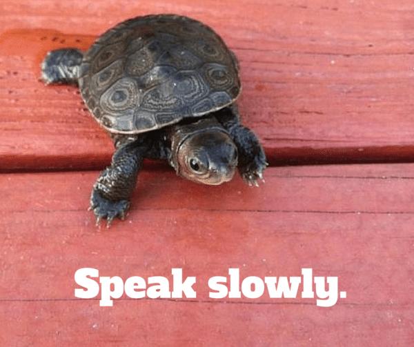 6.5_Speak slowly