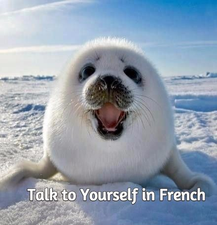 talk to yourself in french talk in french
