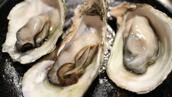 oyster recipe talk in french
