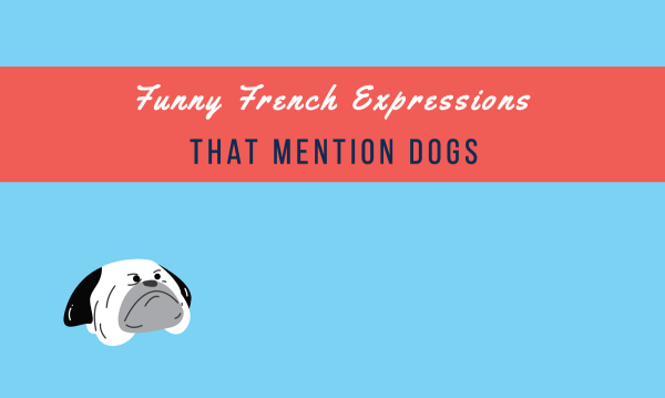 french-dogs-expressions