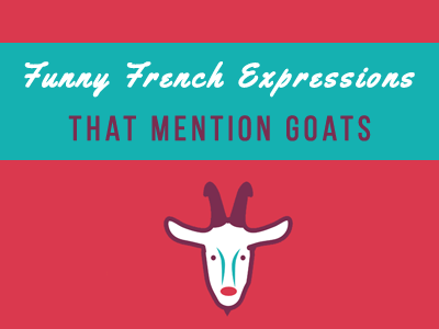 funny french expressions