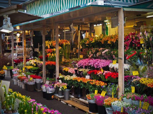 flower-market-ile-de-la-cite