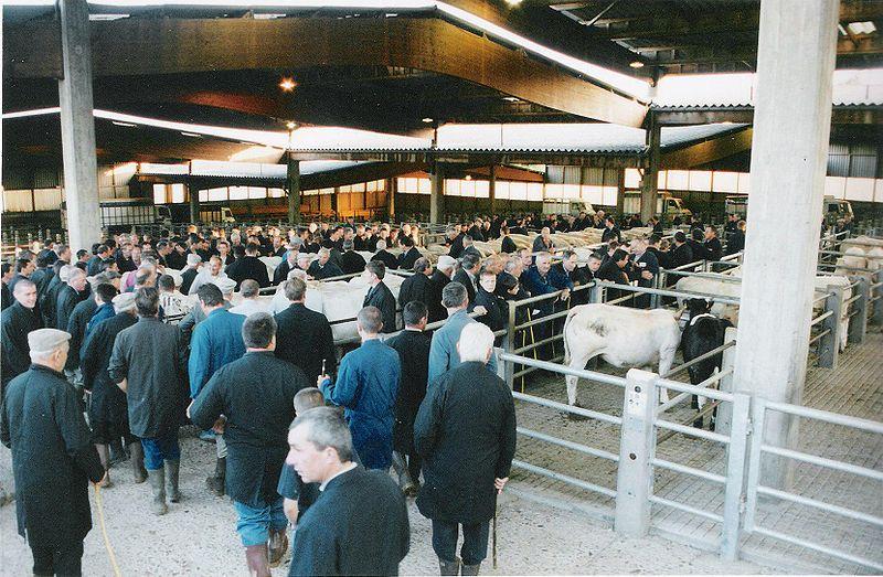 livestock-market